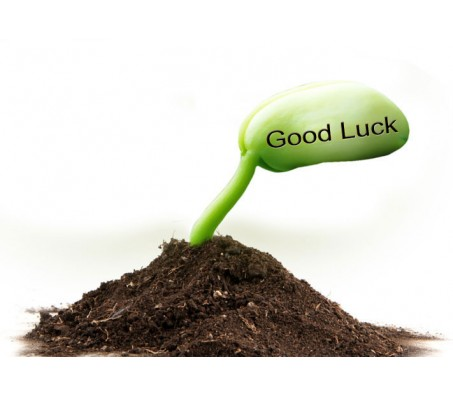 "2 Sets of ""Good Luck"" Message Seed"