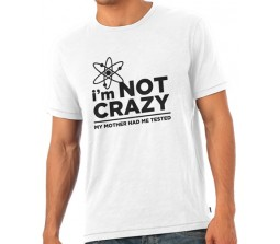 Big Bang Therory  I Am Not Crazy My Mother Had Me Tested