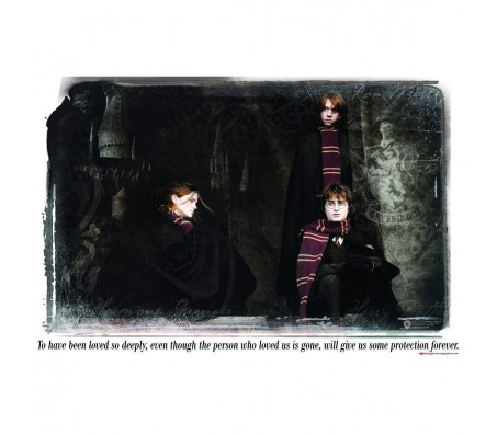 Harry Potter Quote Loved Ones Protection Forever Poster By Happy GiftMart Licensed by WB