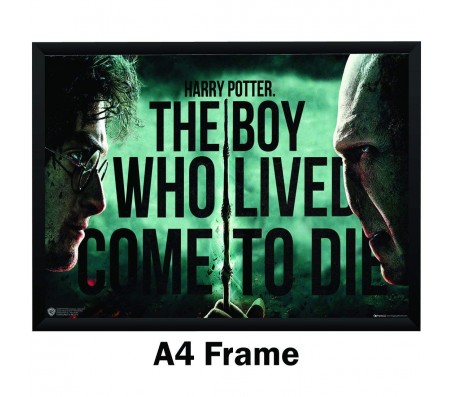 Harry Potter Voldemort 'The Boy Who Lived Poster By Happy GiftMart Licensed by WB