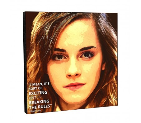 Harry Potter Hermione Breaking The Rukes Quote Pop Art Wooden Frame Poster